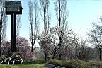 http://www.cittametropolitana.mi.itSabato 26 gennaio. Monumento al deportato politico